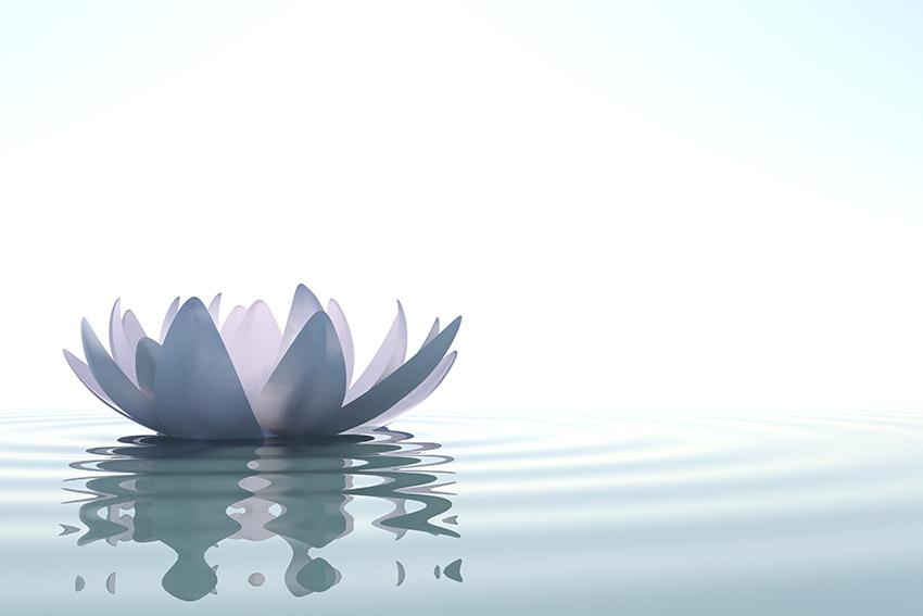 Bien-faits de la méditation